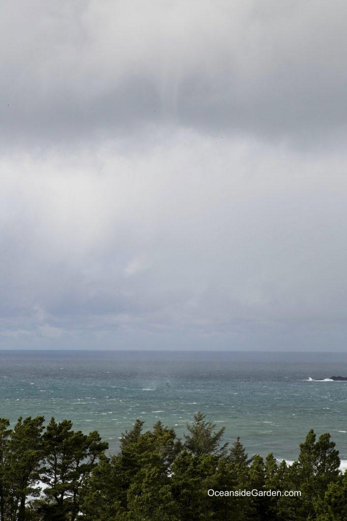 Funnel Cloud / Waterspout at Oceanside, Oregon.